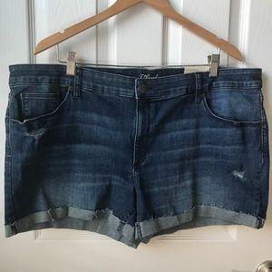 NWT Universal Thread Jean Shorts Size 22W